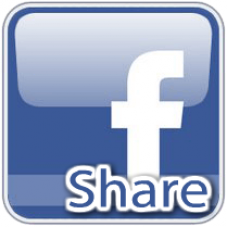 500 Facebook Quality Shares